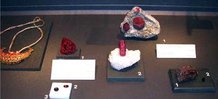 Dijon Museum Exhibit photo image