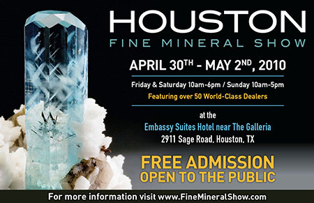 Houston FMS poster image
